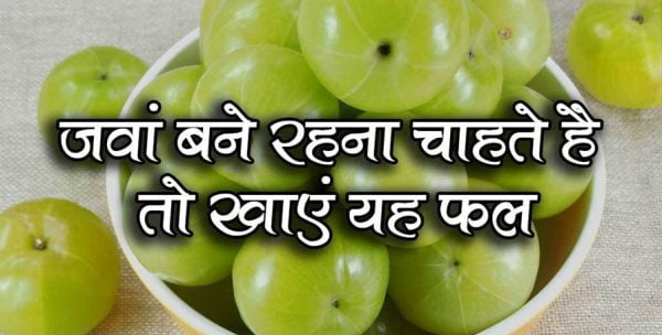 आंवला :- एक महत्वपूर्ण फल आपके सेहत के लिए