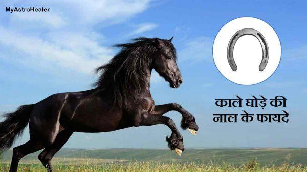 काले घोड़े की नाल के अचूक उपाय